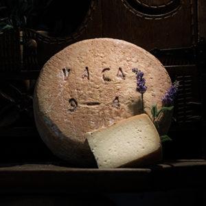Queso curado de vaca elaborado en la quesería Río Deva