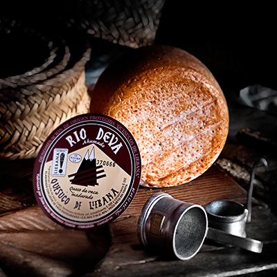 Quesuco de Liébana de vaca ahumado elaborado en la quesería Río Deva